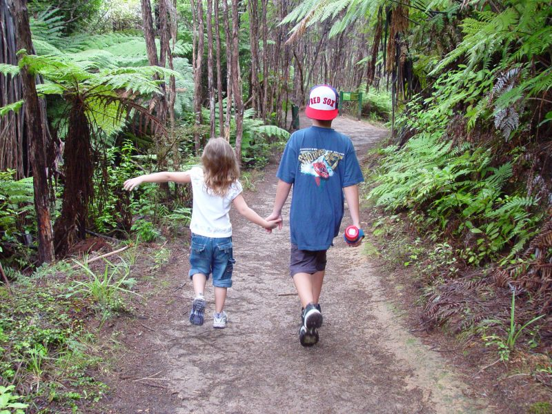 an image of Molly and Jimmy walking on a nature trail, holding hands
