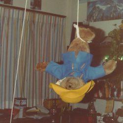 Stuffed Paddington Bear hanging by his feet in a dorm room