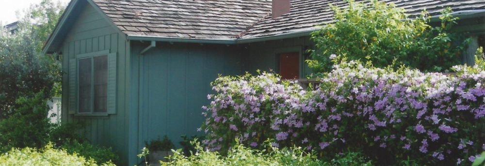 Front door of 1941 Hurst Avenue, the author's childhood home. Green house with bushes with purple flowers in front and various green grasses on the ground. Door is reddish in color; house is green.
