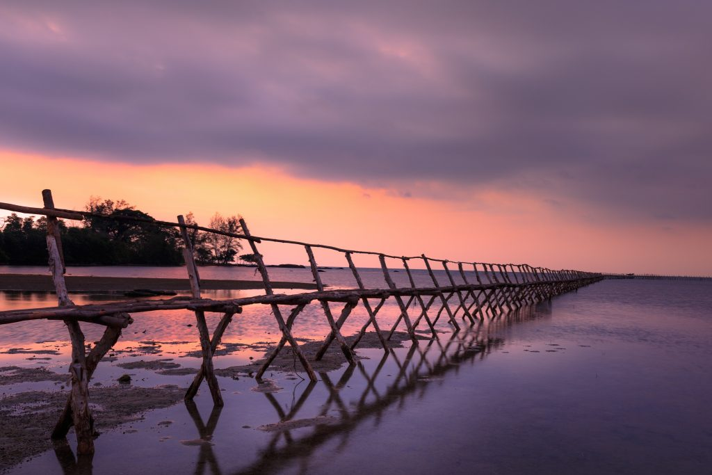 A wooden bridge stretching from left to right into the horizon during sunrise with trees on the left and water below
