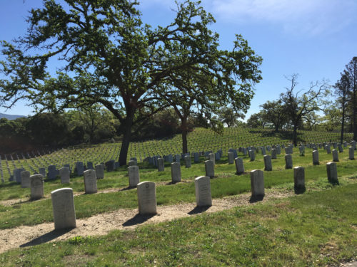 Photo of the Veterans Home cemetery with several rows of white grave markers and large trees
