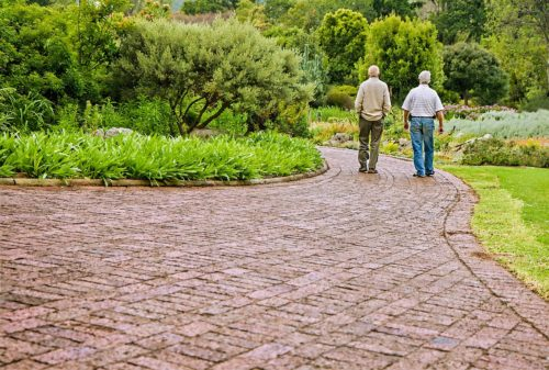 Two older men walking on a brick path in a garden. The men are in the right of the picture. The man on the left is wearing a light tan sweater with darker tan pants. The man on the right is wearing a short sleeve white shirt and jeans.