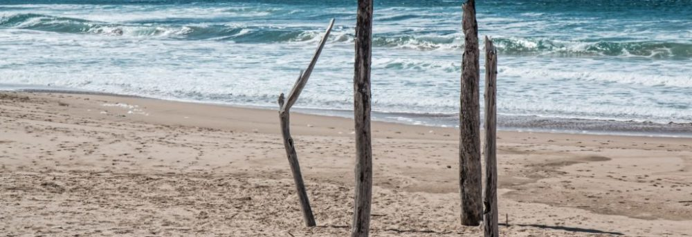 Sandy beach with waves in the background. In the foreground, there are four pieces of driftwood stuck vertically into the sand.