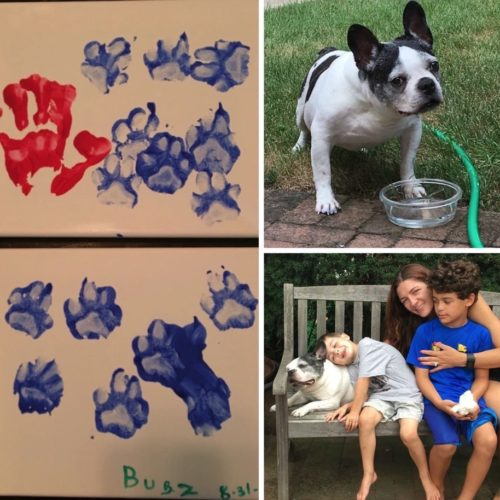 Four quadrant photo -- the top left photo has red and blue paw prints. The lower left has blue pawprints. Bugz is in the top right photo with his head just above a hose bib. Shani and her boys are sitting on a wood bench. Shani is in the middle wearing a blue top. One son is standing in front of her between her knees wearing a blue top and blue shorts. The other son is wearing a light gray t-shirt, and he is resting his head on Bugz.