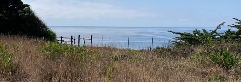 The view of the ocean from the bench where the wind phone sits. There's a mowed path with taller brown grass behind it, leading to the edge of the bluff and a barbed wire fence with a gate and the ocean and blue sky beyond that