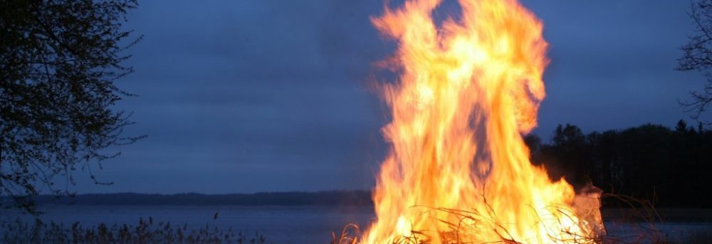 A bonfire on the beach in the midd and right of the photo. The flames are high. There's a tree in the left of the photo and behind both is the dark blue sea and a slightly lighter dark blue sky during dusk.